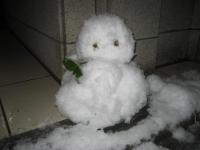 150103朝さんぽ⑤雪だるま