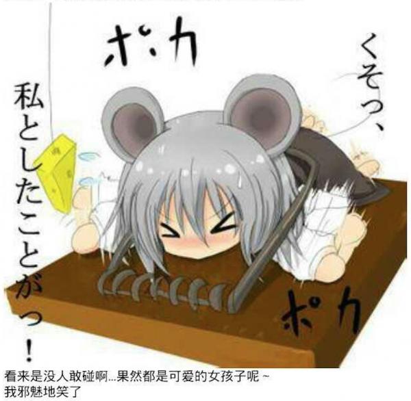 抓老鼠13