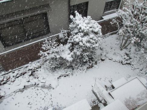 積雪 001-001