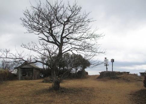 SYK(琴石山) 006-001