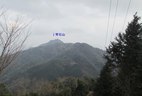SYK(琴石山) 013-001