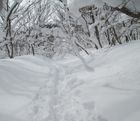 道後山スノーハイキング 沈 015-001