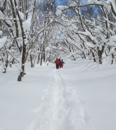 道後山スノーハイキング 沈 016-001