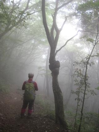 福智山&宝満山 M 038