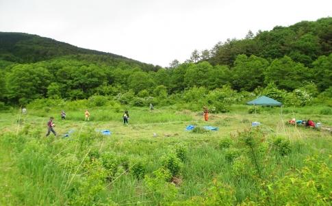 霧ガ谷湿原再生活動 ボランテイア 012-001