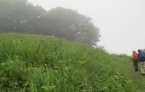 比婆山 011-001