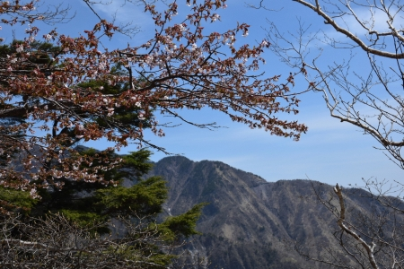 21赤薙山