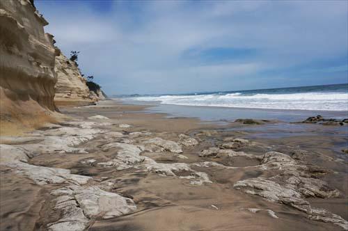 4万葉の森ささきの浜