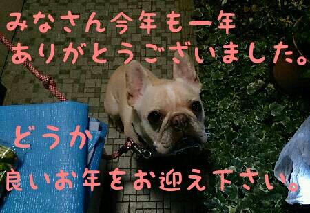 IMG_20141231_204153.jpg