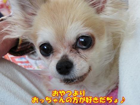 sx700IMG_0646.jpg
