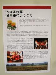 benibana-okegawa150620-111.jpg