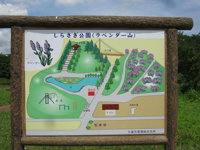 shoubu150620-110.jpg