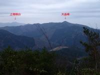P3310137c.jpg