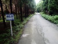P6060032c.jpg