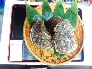 150606岩牡蠣
