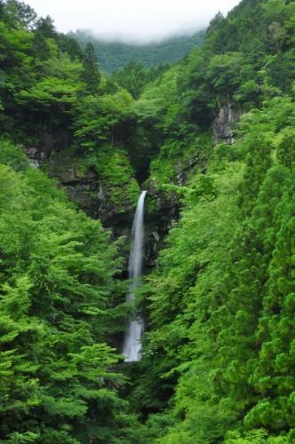 9大瀧の滝15.06.20