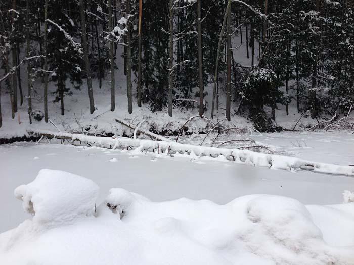 2014 大雪 2