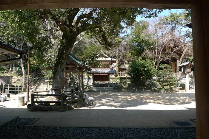 志賀海神社  福岡県  14