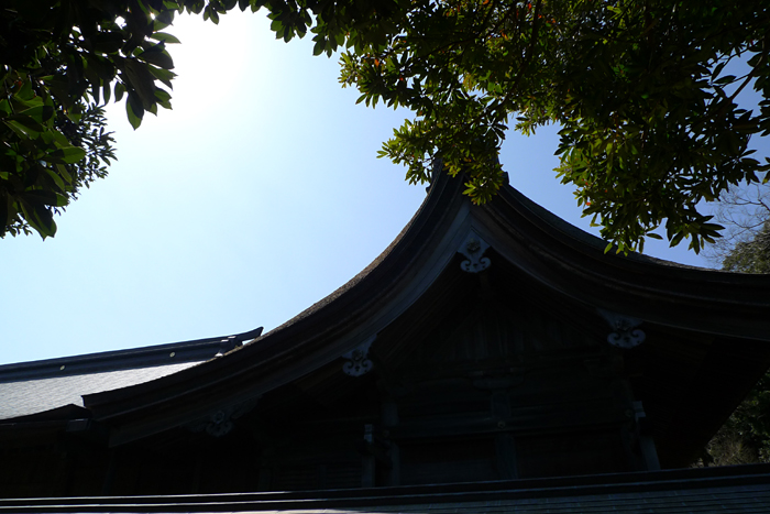 志賀海神社  福岡県  23