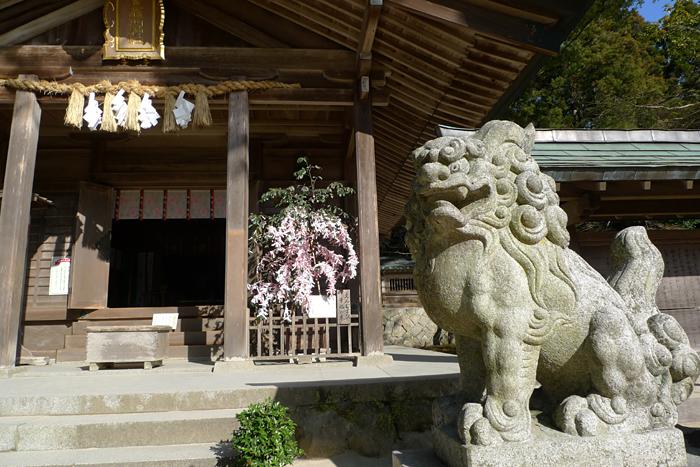寶満宮竈門神社  福岡県  12