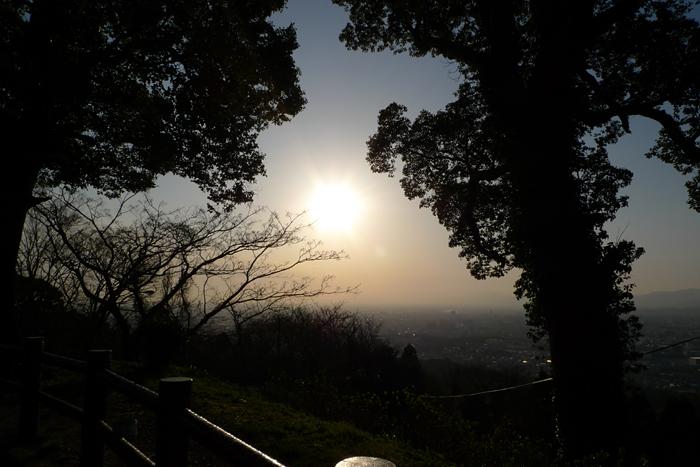 髙良大社  福岡県  17