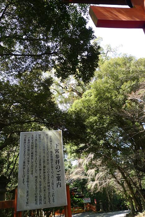 宇佐神宮  大分県  40