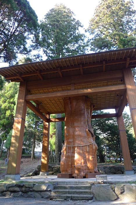 國造神社  熊本県  11