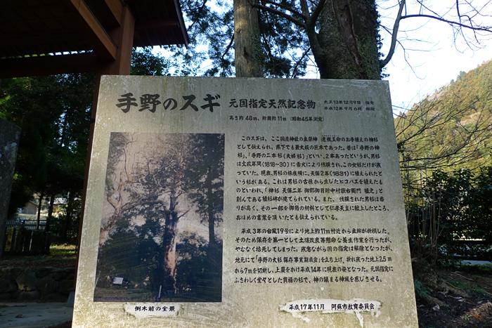 國造神社  熊本県  13