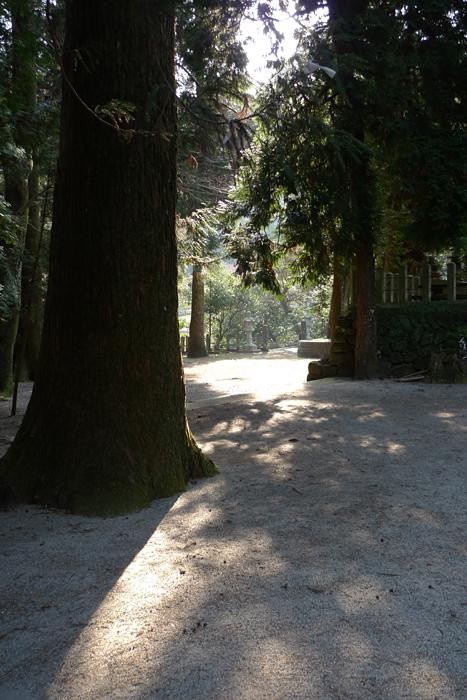 國造神社  熊本県  15