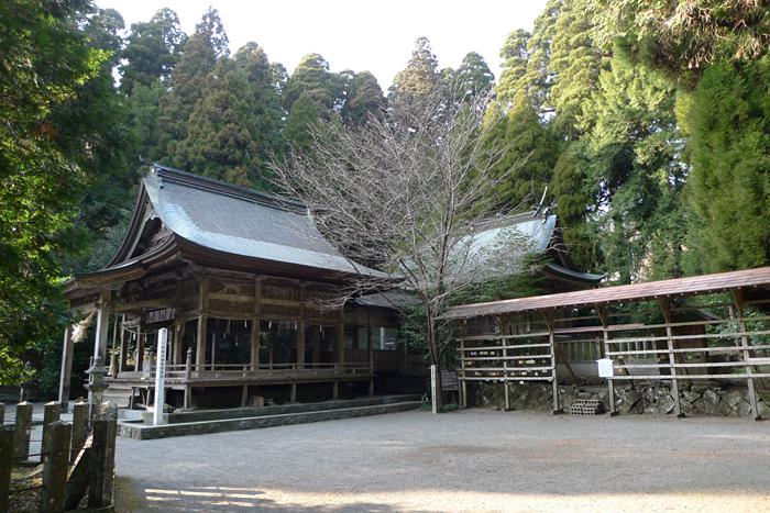 國造神社  熊本県  9