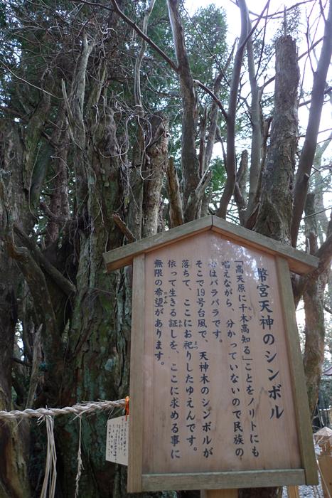 幣立神宮  熊本県  10