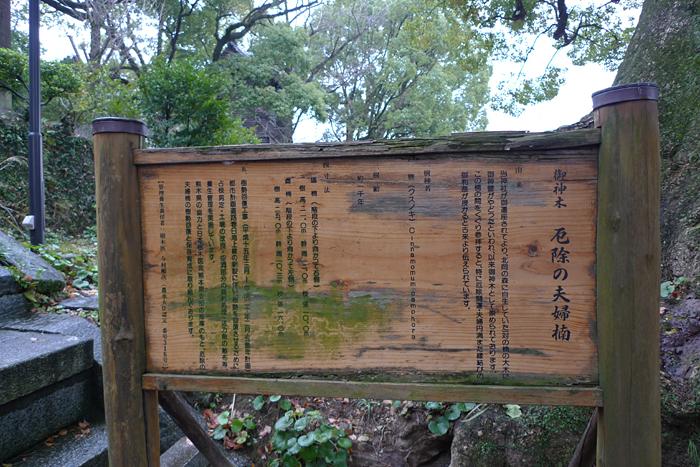 北岡神社 熊本市 4
