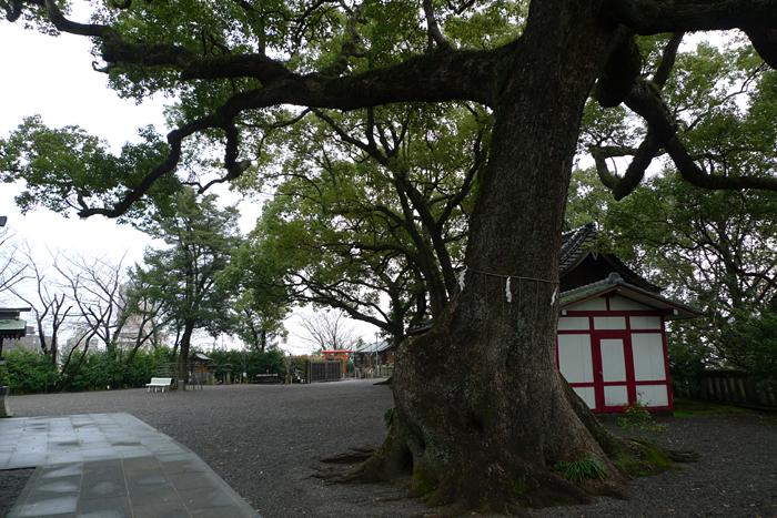 北岡神社 熊本市 8