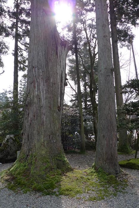 高瀬神社  富山県  10