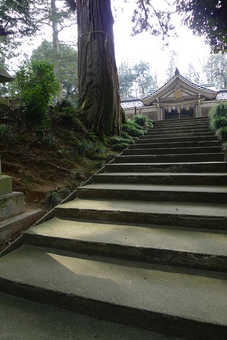 氣多神社  富山県  7