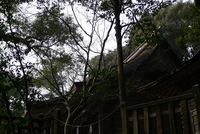氣多大社  石川県  13