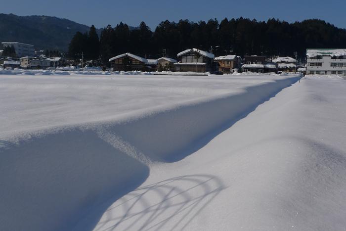 雪景色 2015  4