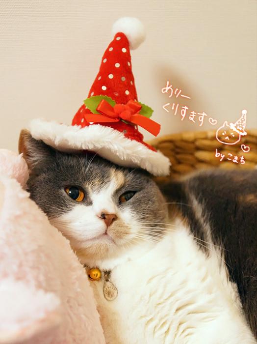 メリークリスマスこまち