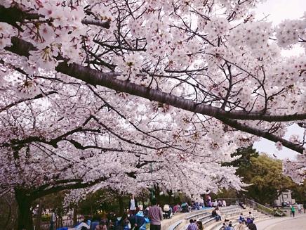2015-04-05-21-37-21_deco.jpg
