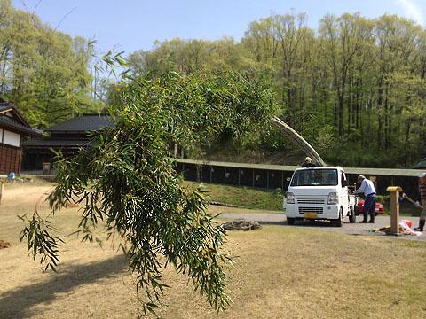 1長い竹到着480