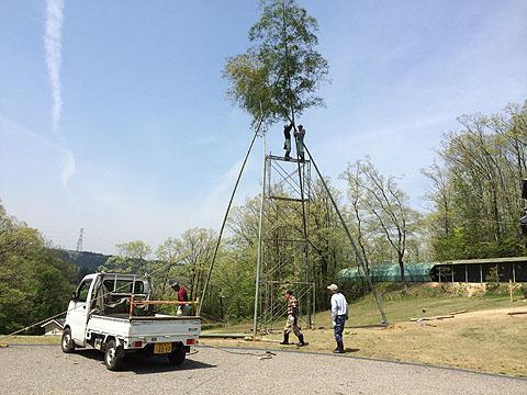3竹を立てる480