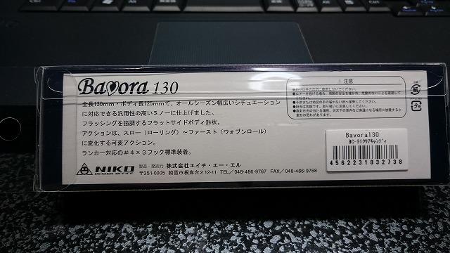 DSC_0037RSZ.jpg