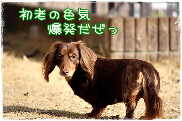 10sai2.jpg