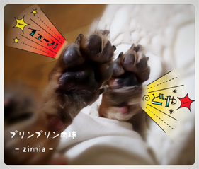 Hit!!④