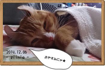 お昼寝~☆②