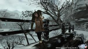 スズカと冬景色