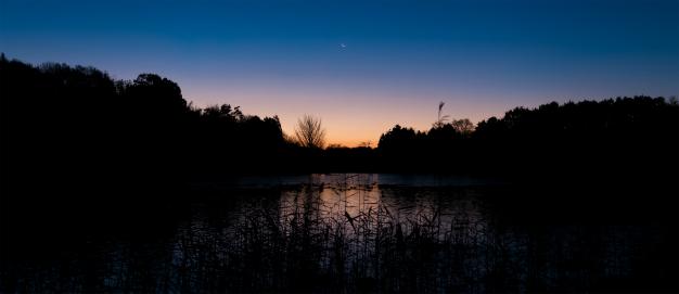 羽田沼の夜明け