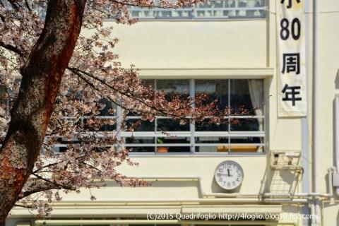 2015年 春 / 駒場東大前