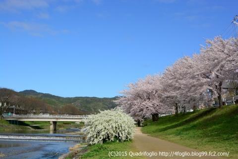 2015年 春・京都