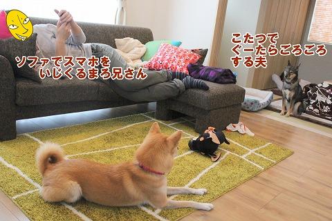 s-toyama150112-IMG_5400